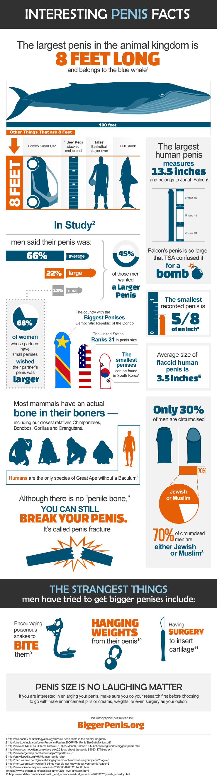 Interesting Penis Facts
